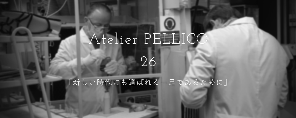 Interview PELLICO